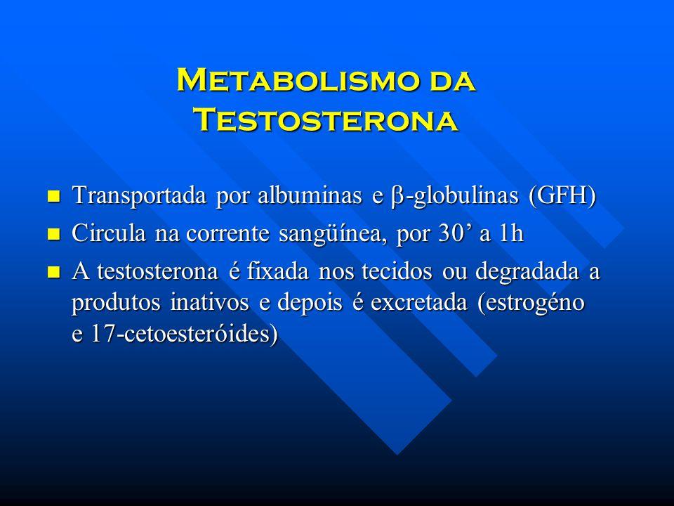 Metabolismo da Testosterona Transportada por albuminas e -globulinas (GFH) Transportada por albuminas e -globulinas (GFH) Circula na corrente sangüíne