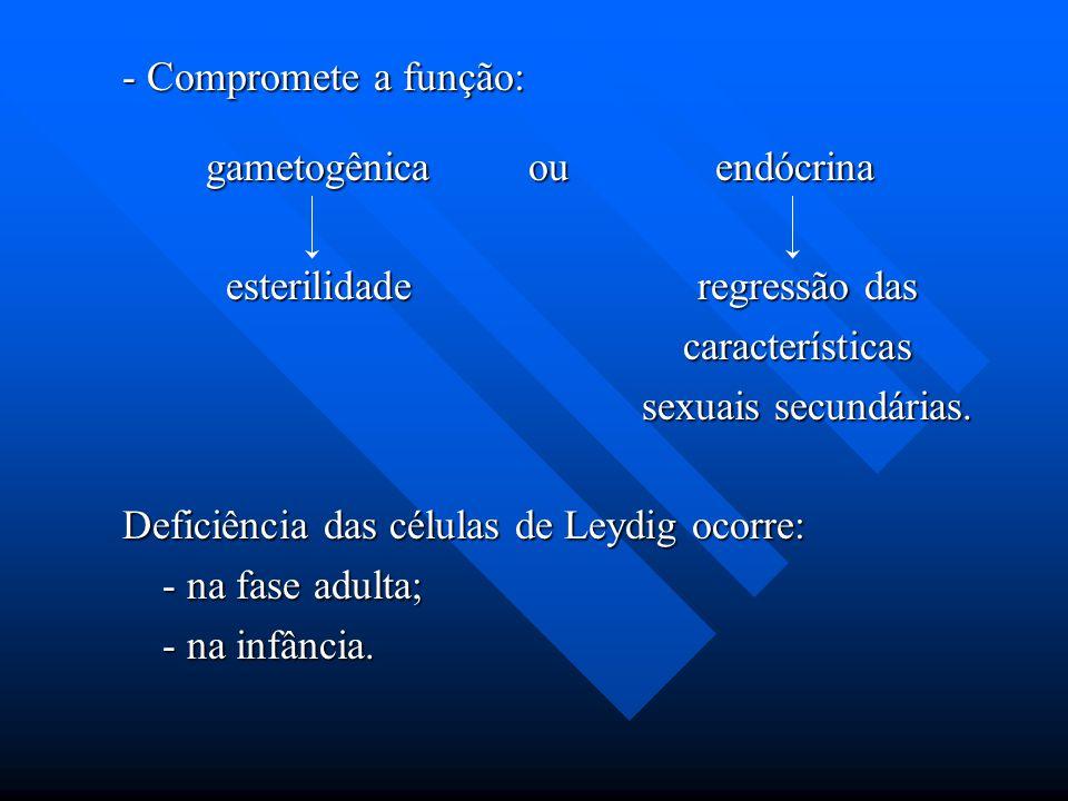 - Compromete a função: gametogênica ou endócrina gametogênica ou endócrina esterilidade regressão das esterilidade regressão das características carac