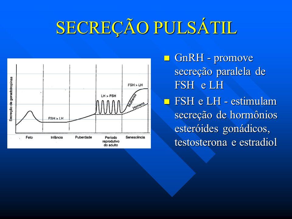 SECREÇÃO PULSÁTIL GnRH - promove secreção paralela de FSH e LH FSH e LH - estimulam secreção de hormônios esteróides gonádicos, testosterona e estradi