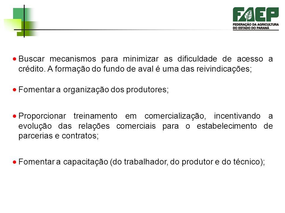 PLANEJAMENTO DAS AÇÕES PARA 2003 Identificar alternativas para suprir a insuficiência de assistentes técnicos capazes de alcançar todos os produtores;