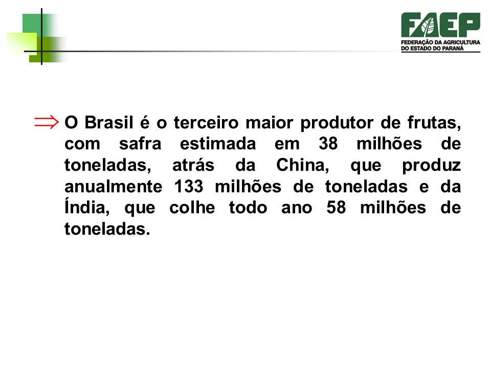 As exportações brasileiras de frutas frescas devem somar US$ 512,1 milhão no biênio 2003/04, um crescimento de 112% sobre a receita obtida pelo setor