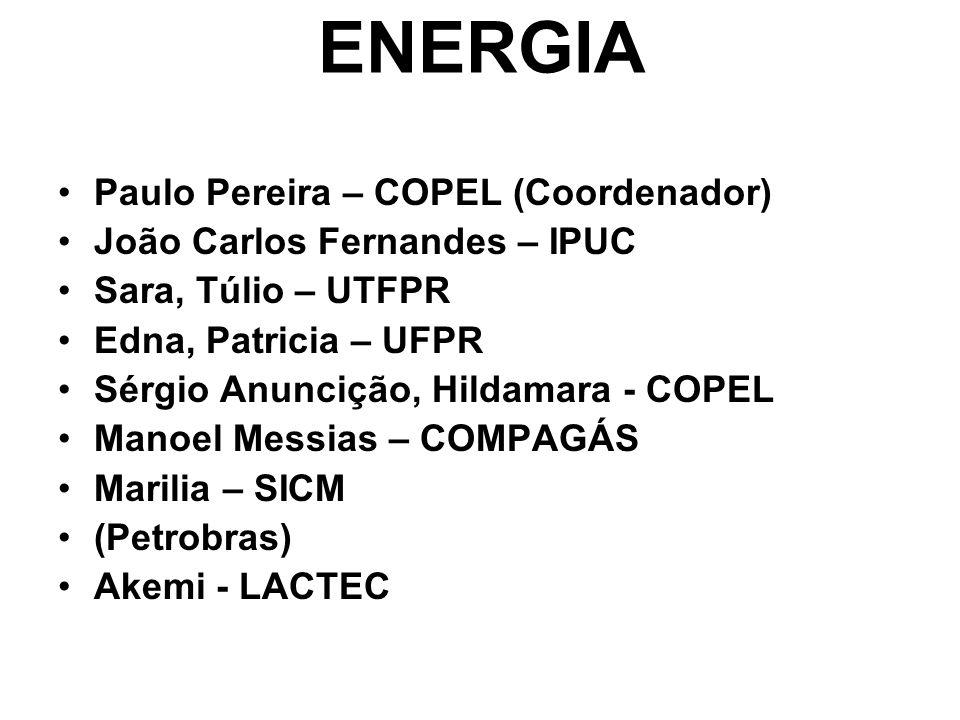 PROCESSOS INDUSTRIAIS Marília – SICM (Coordenadora) Edna, Patricia – UFPR Moacir – SENAI Juliane – LACTEC Marcos – SENAI