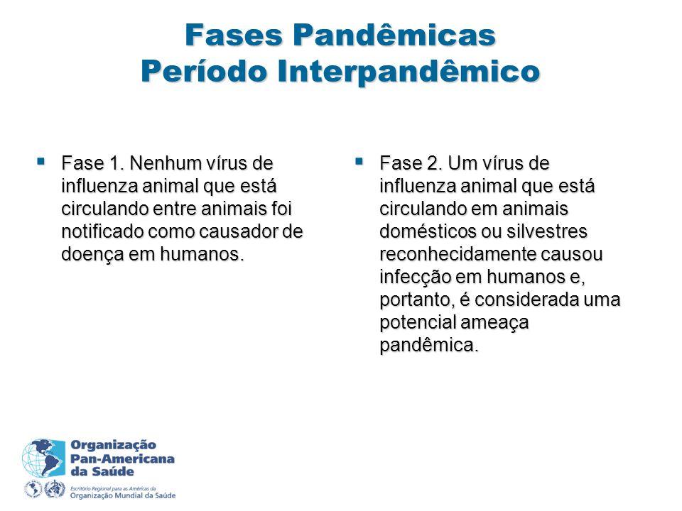 Fases Pandêmicas Período Interpandêmico Fase 1.