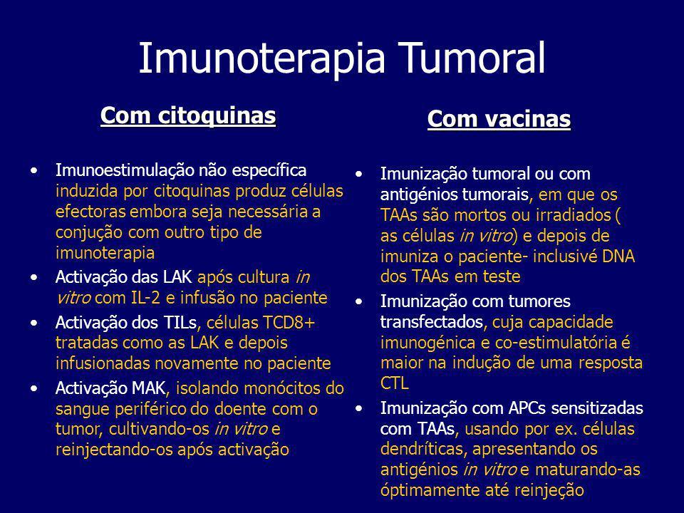 Tumores Ratinho A - estirpe C57BL6 Ko NK Ratinho B - estirpe BalB C Ko B 2 -microglobulina Ratinho C - estirpe Nude Qual o ratinho que melhor se defende de um tumor no baço que para escapar ao SI escondeu o seu MHC I?