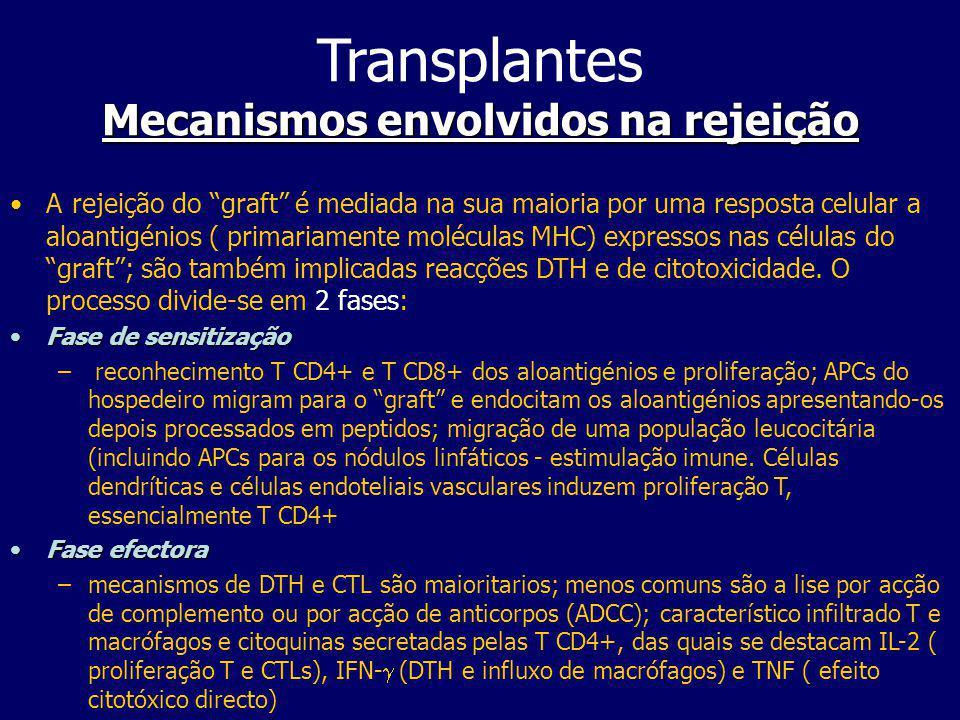 Imunossupressão pós-operatória Transplantes Imunossupressão pós-operatória Para evitar a rejeição recorre-se à terapia de imunossupressão com o objectivo de diminuir a proliferação ou activação linfocitária.