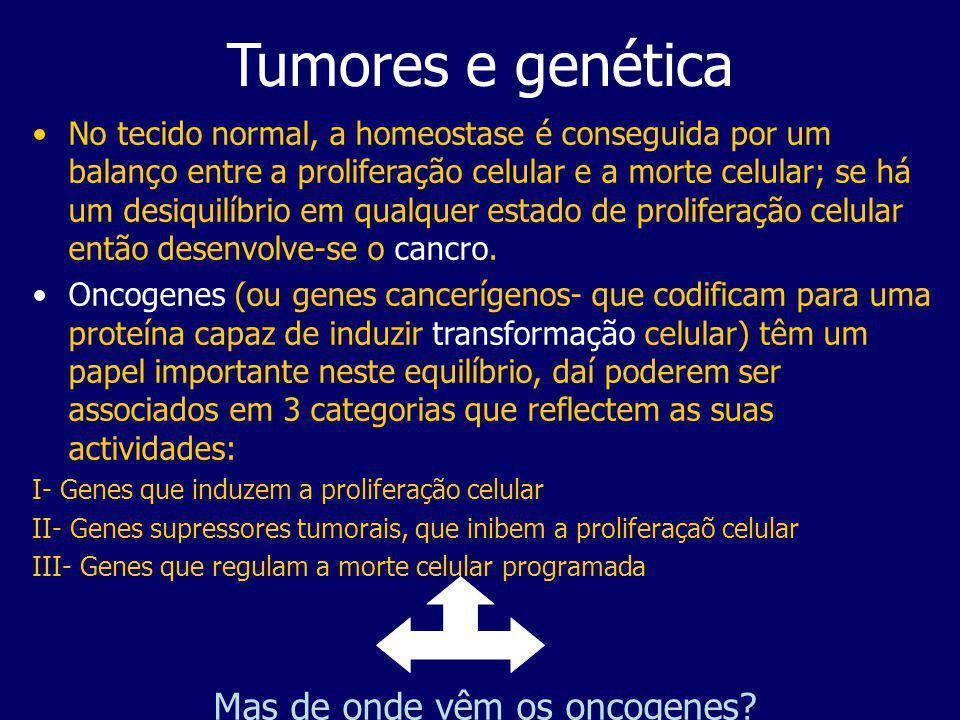 Tumores e genética A conversão de proto-oncogenes em oncogenes pode envolver mutações, resultando na produção de produtos genéticos diferentes ou amplificação/translocação de DNA, resultando na produção crescente ou decrescente de produtos genéticos.