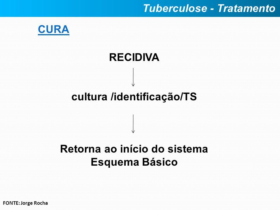 CURA RECIDIVA cultura /identificação/TS Retorna ao início do sistema Esquema Básico Tuberculose - Tratamento FONTE: Jorge Rocha