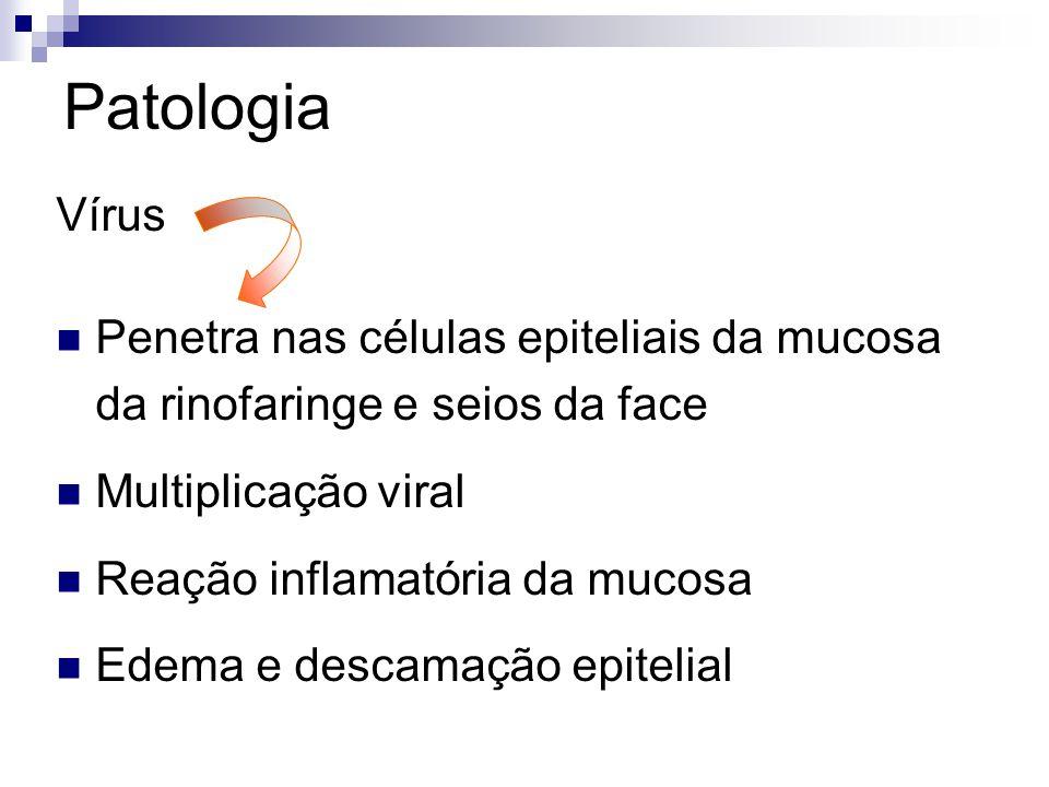 Patologia Vírus Penetra nas células epiteliais da mucosa da rinofaringe e seios da face Multiplicação viral Reação inflamatória da mucosa Edema e desc