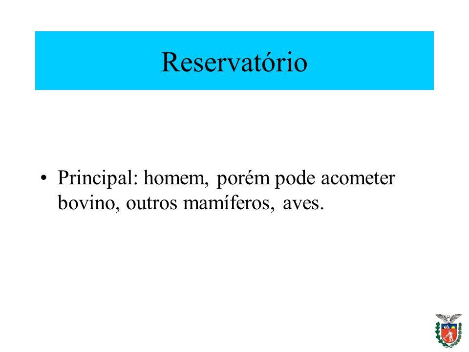 Reservatório Principal: homem, porém pode acometer bovino, outros mamíferos, aves.