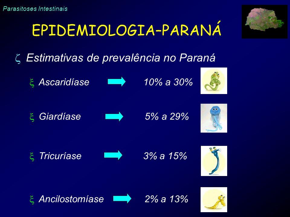 Parasitoses Intestinais EPIDEMIOLOGIA–PARANÁ Estimativas de prevalência no Paraná Ascaridíase 10% a 30% Giardíase 5% a 29% Tricuríase 3% a 15% Ancilos