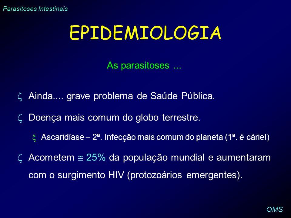 EPIDEMIOLOGIA As parasitoses... Ainda.... grave problema de Saúde Pública. Doença mais comum do globo terrestre. Ascaridíase – 2ª. Infecção mais comum