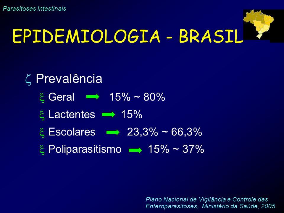 Parasitoses Intestinais Prevalência Geral 15% ~ 80% Lactentes 15% Escolares 23,3% ~ 66,3% Poliparasitismo 15% ~ 37% EPIDEMIOLOGIA - BRASIL Plano Nacio