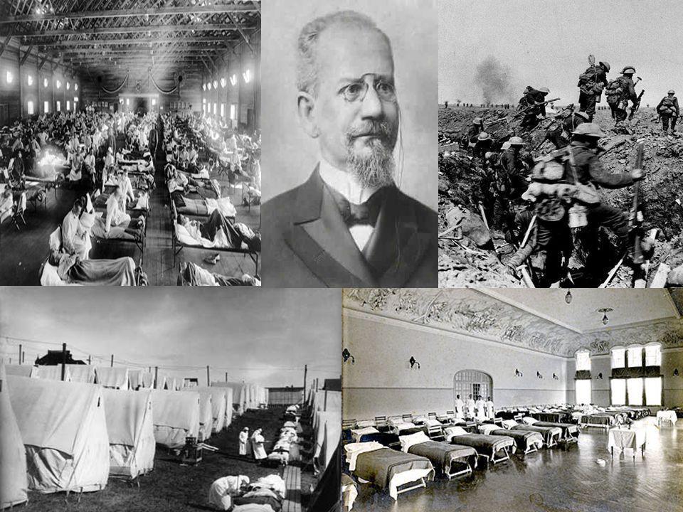 ENDEMIA DE 1930 GRIPE SUÍNA - ANIMAIS USA e México Vírus (Influenza H1N1 e H3N2): Gripe suínaVírus (Influenza H1N1 e H3N2): Gripe suína Entre suínosEntre suínos Transmissão: Ar e objetos contaminadosTransmissão: Ar e objetos contaminados