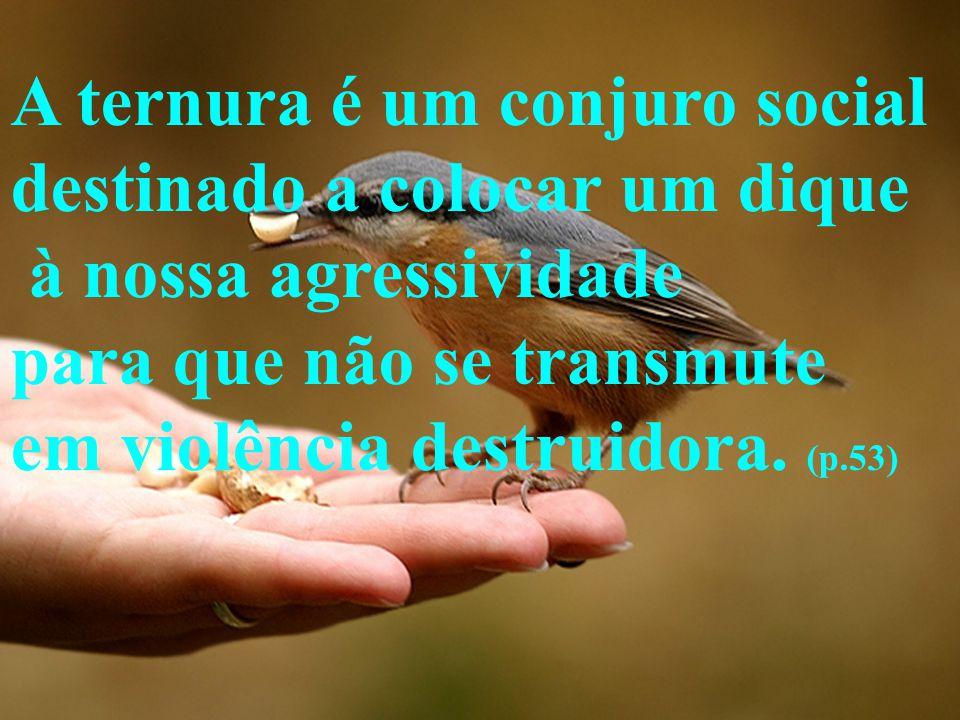 A ternura é um conjuro social destinado a colocar um dique à nossa agressividade para que não se transmute em violência destruidora. (p.53)