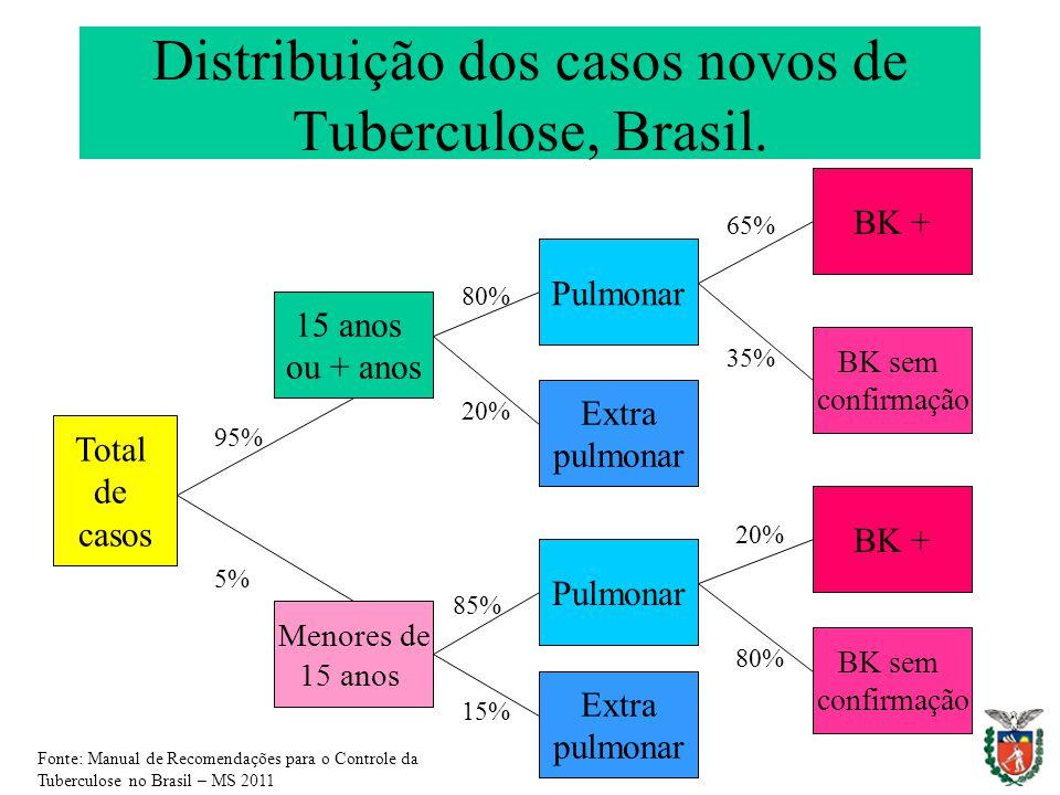 Distribuição dos casos novos de Tuberculose, Brasil. Total de casos 15 anos ou + anos Menores de 15 anos Pulmonar Extra pulmonar Pulmonar Extra pulmon
