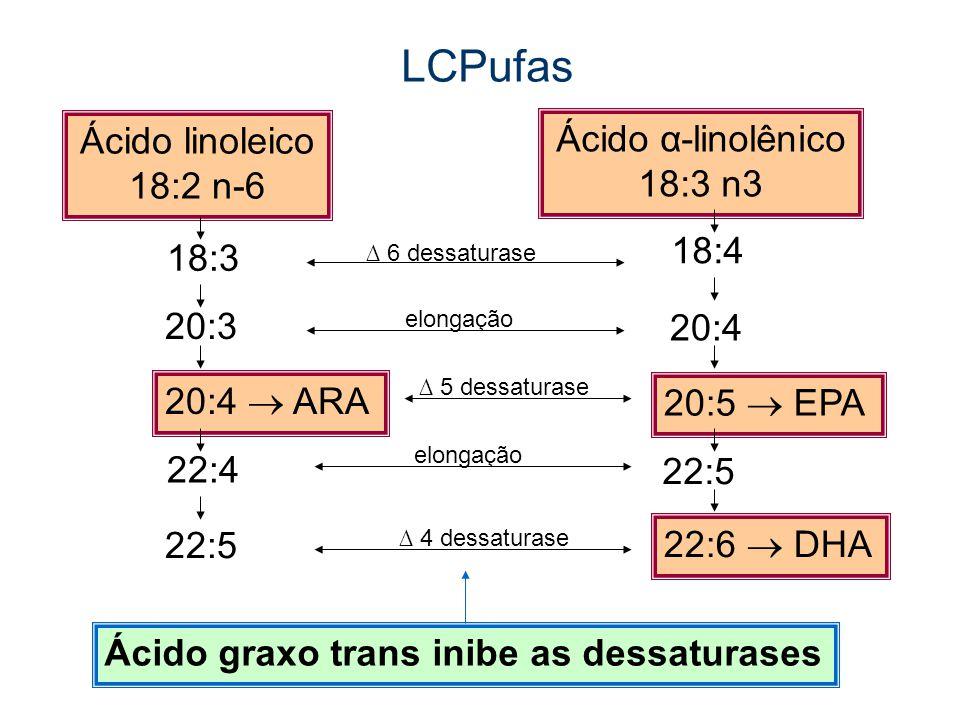 LCPufas Ácido graxo trans inibe as dessaturases Ácido linoleico 18:2 n-6 Ácido α-linolênico 18:3 n3 18:3 20:3 22:4 20:4 ARA 22:5 18:4 20:4 20:5 EPA 22:5 22:6 DHA 6 dessaturase 5 dessaturase 4 dessaturase elongação