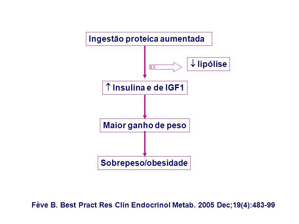 Ingestão proteica aumentadaa lipólise Insulina e de IGF1 Maior ganho de peso Sobrepeso/obesidade Fève B.