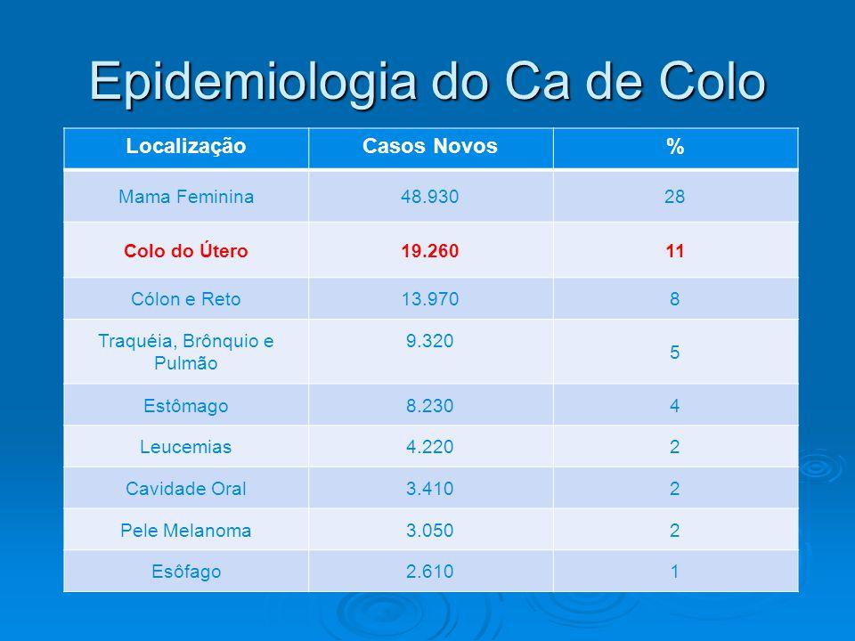 LocalizaçãoCasos Novos% Mama Feminina48.93028 Colo do Útero19.26011 Cólon e Reto13.9708 Traquéia, Brônquio e Pulmão 9.320 5 Estômago8.2304 Leucemias4.2202 Cavidade Oral3.4102 Pele Melanoma3.0502 Esôfago2.6101 Epidemiologia do Ca de Colo
