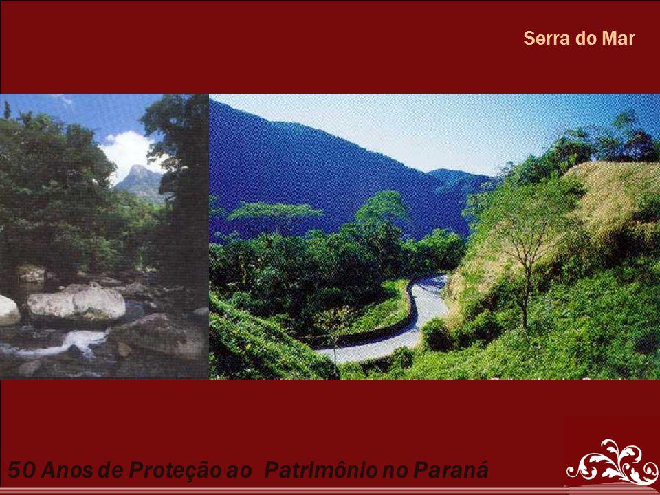 50 Anos de Proteção ao Patrimônio no Paraná Serra do Mar