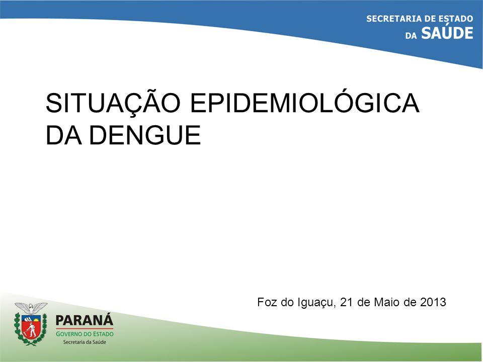 SITUAÇÃO EPIDEMIOLÓGICA DA DENGUE Foz do Iguaçu, 21 de Maio de 2013
