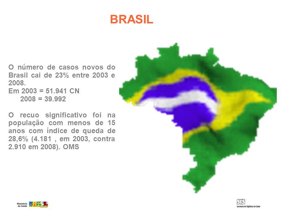 BRASIL O número de casos novos do Brasil cai de 23% entre 2003 e 2008. Em 2003 = 51.941 CN 2008 = 39.992 O recuo significativo foi na população com me