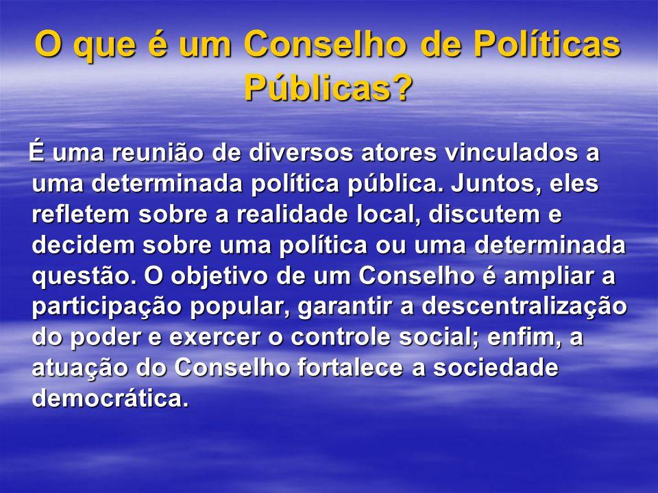 O que é um Conselho de Políticas Públicas.