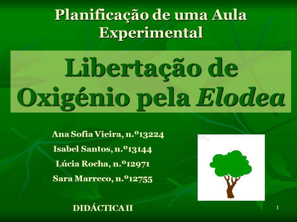1 Planificação de uma Aula Experimental Ana Sofia Vieira, n.º13224 Isabel Santos, n.º13144 Lúcia Rocha, n.º12971 Sara Marreco, n.º12755 DIDÁCTICA II Libertação de Oxigénio pela Elodea