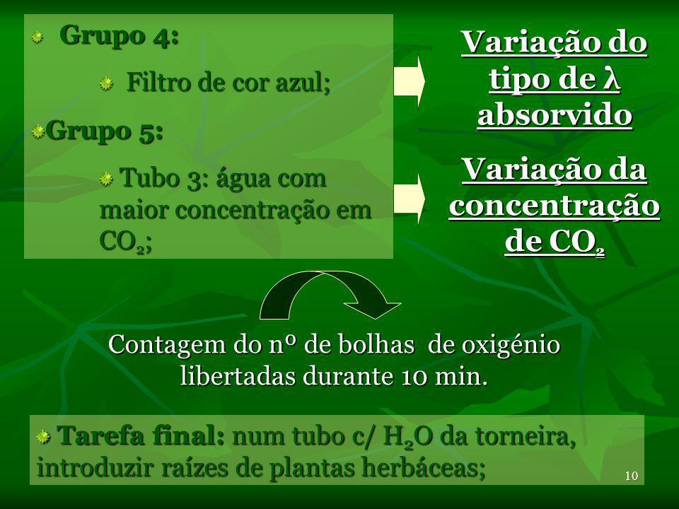 9Variáveis: Grupo 1= Grupo Controlo: lâmpadas de intensidade moderada ~40W lâmpadas de intensidade moderada ~40W cartolina preta cartolina preta Grupo