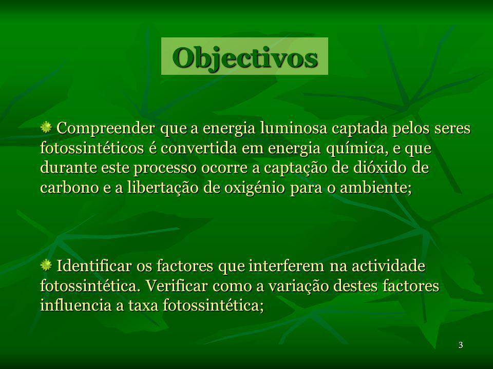 2 Unidade 1: - Obtenção de matéria Biologia e Geologia 10ºano 10ºano Tema: - Obtenção de matéria pelos seres autotróficos Sub-tema: - Fotossíntese Sum
