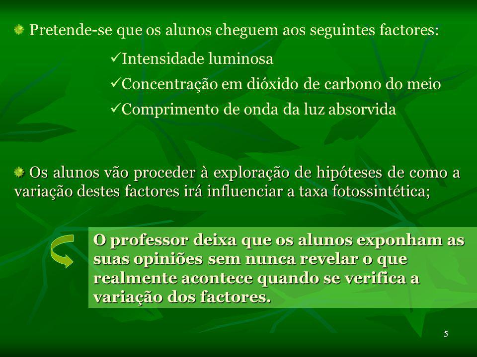 5 Pretende-se que os alunos cheguem aos seguintes factores: Intensidade luminosa Concentração em dióxido de carbono do meio Comprimento de onda da luz absorvida Os alunos vão proceder à exploração de hipóteses de como a variação destes factores irá influenciar a taxa fotossintética; Os alunos vão proceder à exploração de hipóteses de como a variação destes factores irá influenciar a taxa fotossintética; O professor deixa que os alunos exponham as suas opiniões sem nunca revelar o que realmente acontece quando se verifica a variação dos factores.