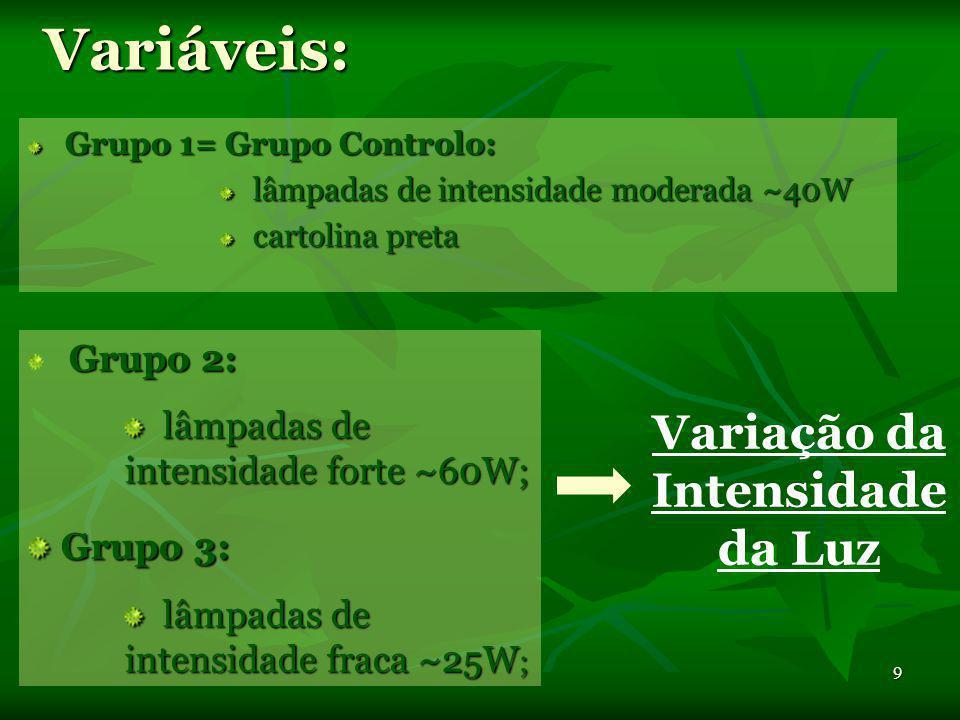 8 Protocolo Experimental Procedimento : Tubo1- água da torneira; Tubo2- água fervida; Tubo 3- água com CO 2 ; Tubo 4- água da torneira; c/ ramos de El