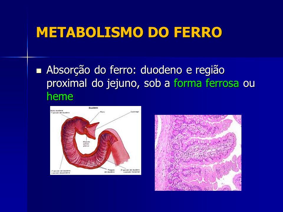 METABOLISMO DO FERRO Absorção do ferro: duodeno e região proximal do jejuno, sob a forma ferrosa ou heme Absorção do ferro: duodeno e região proximal