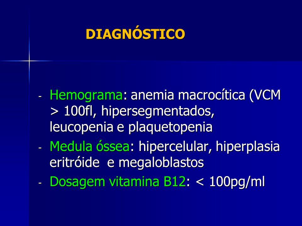 DIAGNÓSTICO DIAGNÓSTICO - Hemograma: anemia macrocítica (VCM > 100fl, hipersegmentados, leucopenia e plaquetopenia - Medula óssea: hipercelular, hiperplasia eritróide e megaloblastos - Dosagem vitamina B12: < 100pg/ml