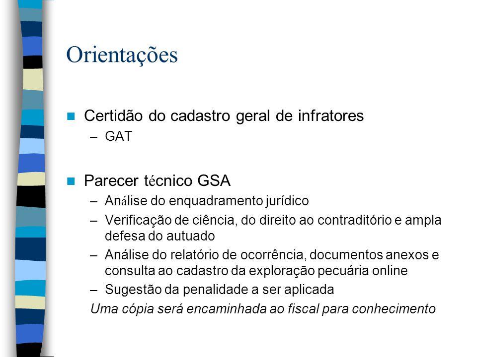 Orientações Certidão do cadastro geral de infratores –GAT Parecer t é cnico GSA –An á lise do enquadramento jurídico –Verificação de ciência, do direi