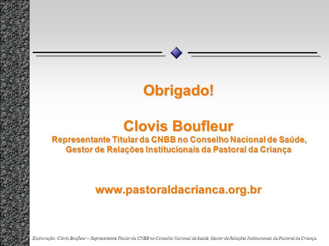 Obrigado! Clovis Boufleur Representante Titular da CNBB no Conselho Nacional de Saúde, Gestor de Relações Institucionais da Pastoral da Criança www.pa