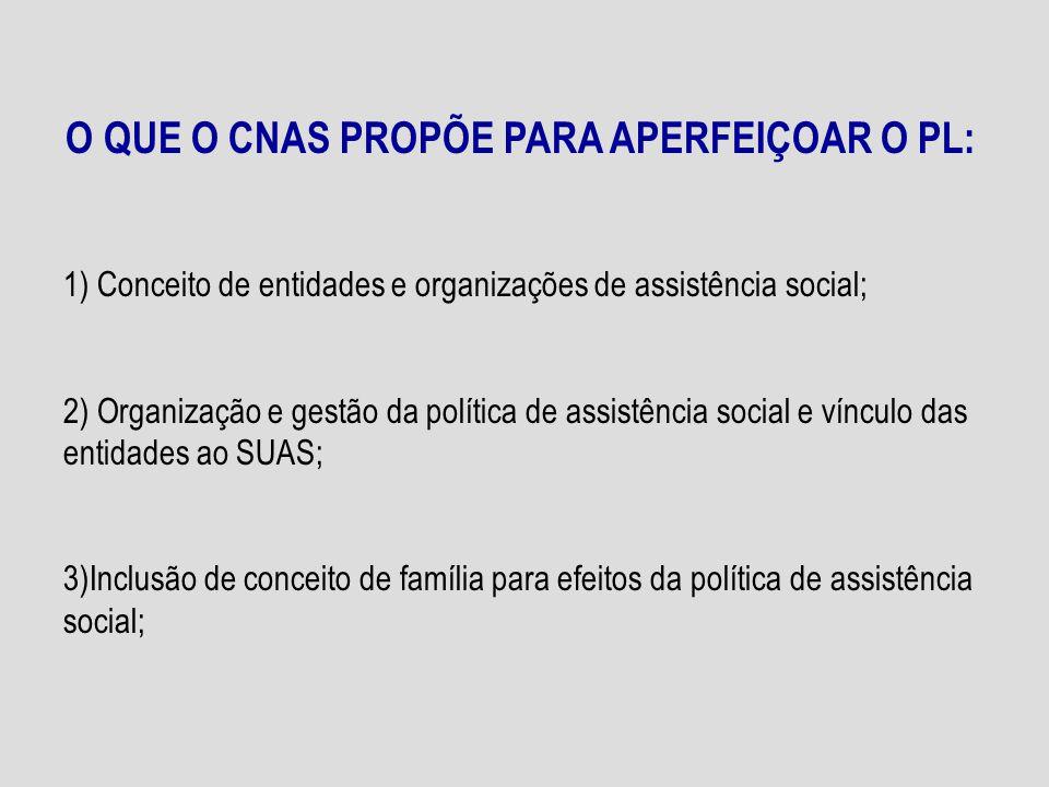 4) Garantia de dotação orçamentária própria para os Conselhos de Assistência Social; 5) Financiamento e competências de cada esfera de governo; 6) Pagamento de pessoal com recursos dos fundos de assistência social; 7) Composição do CNAS.