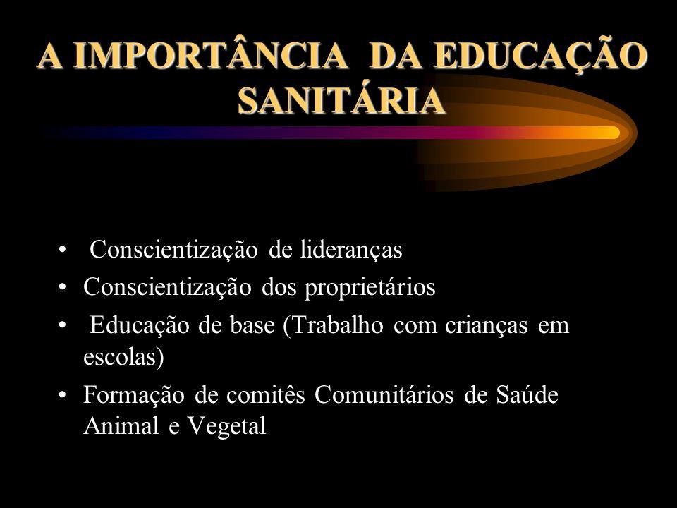 A IMPORTÂNCIA DA EDUCAÇÃO SANITÁRIA Conscientização de lideranças Conscientização dos proprietários Educação de base (Trabalho com crianças em escolas) Formação de comitês Comunitários de Saúde Animal e Vegetal
