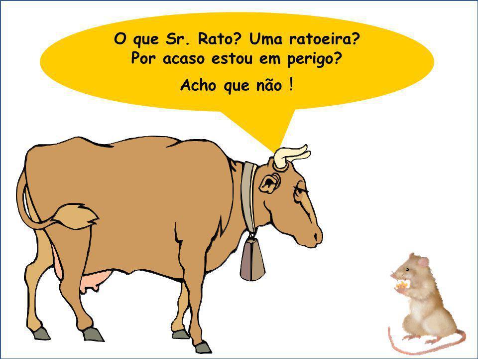 O que Sr. Rato? Uma ratoeira? Por acaso estou em perigo? Acho que não !