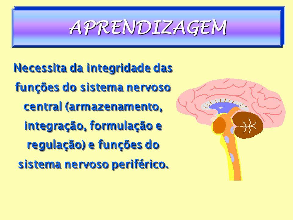 ¹Fatores intelectuais: capacidade mental global, as capacidades perceptivas, resolução de problemas, etc. global, as capacidades perceptivas, resoluçã