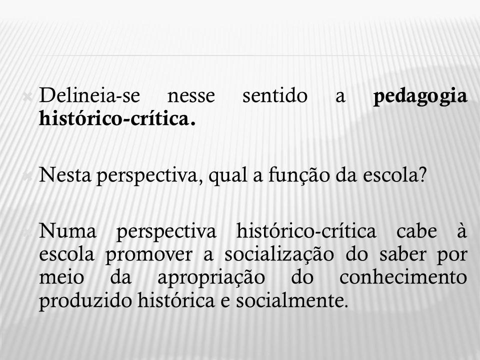 Delineia-se nesse sentido a pedagogia histórico-crítica. Nesta perspectiva, qual a função da escola? Numa perspectiva histórico-crítica cabe à escola