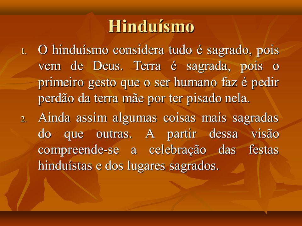 Hinduísmo 1. O hinduísmo considera tudo é sagrado, pois vem de Deus. Terra é sagrada, pois o primeiro gesto que o ser humano faz é pedir perdão da ter