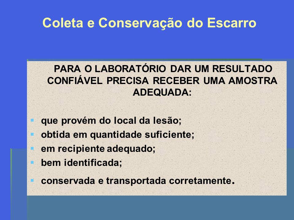Coleta e Conservação do Escarro PARA O LABORATÓRIO DAR UM RESULTADO CONFIÁVEL PRECISA RECEBER UMA AMOSTRA ADEQUADA: que provém do local da lesão; obti