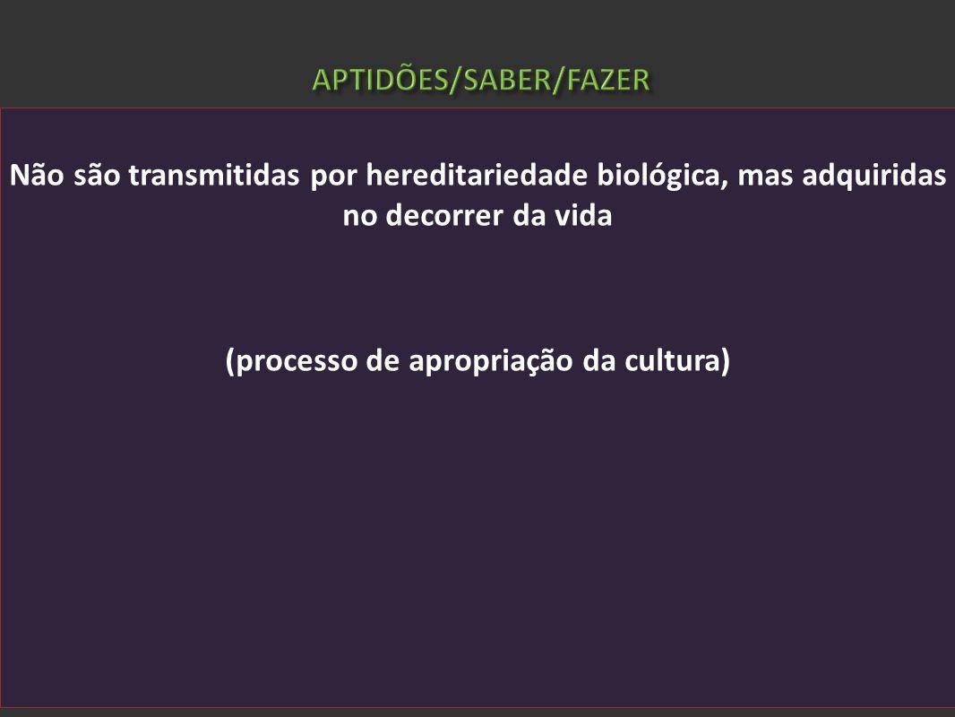Não são transmitidas por hereditariedade biológica, mas adquiridas no decorrer da vida (processo de apropriação da cultura)