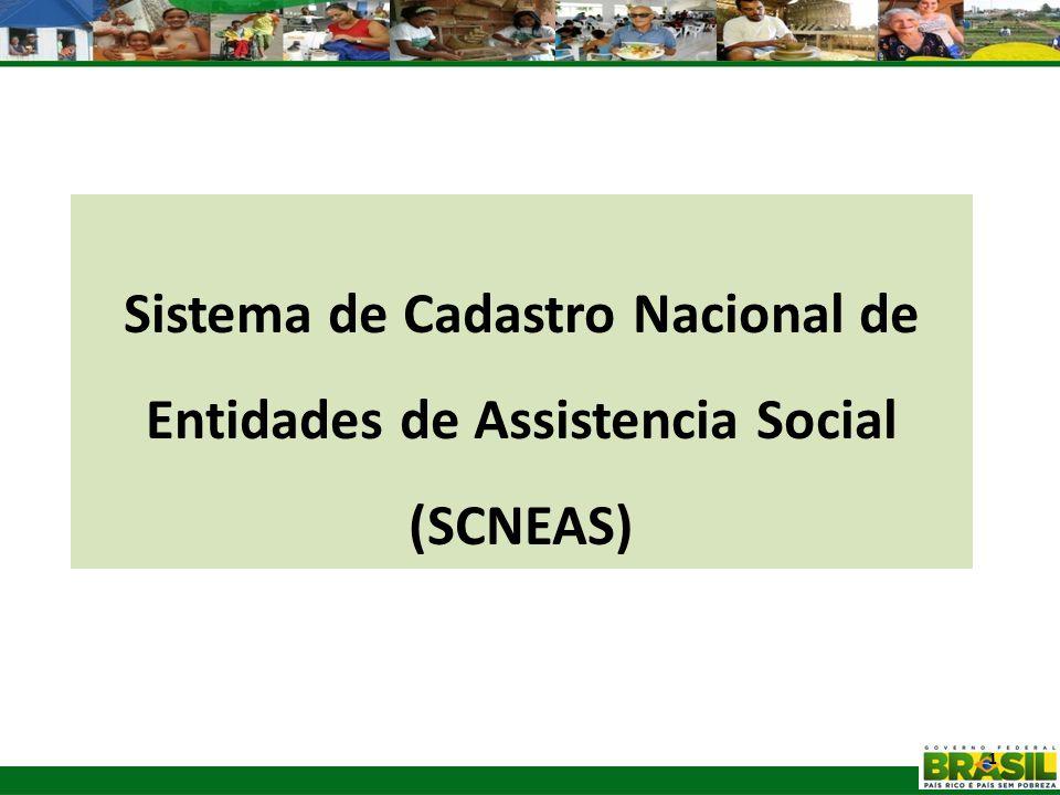 1 Sistema de Cadastro Nacional de Entidades de Assistencia Social (SCNEAS)