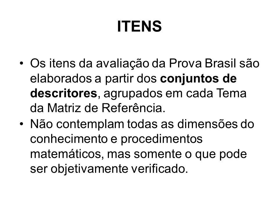 Os itens da avaliação da Prova Brasil são elaborados a partir dos conjuntos de descritores, agrupados em cada Tema da Matriz de Referência.