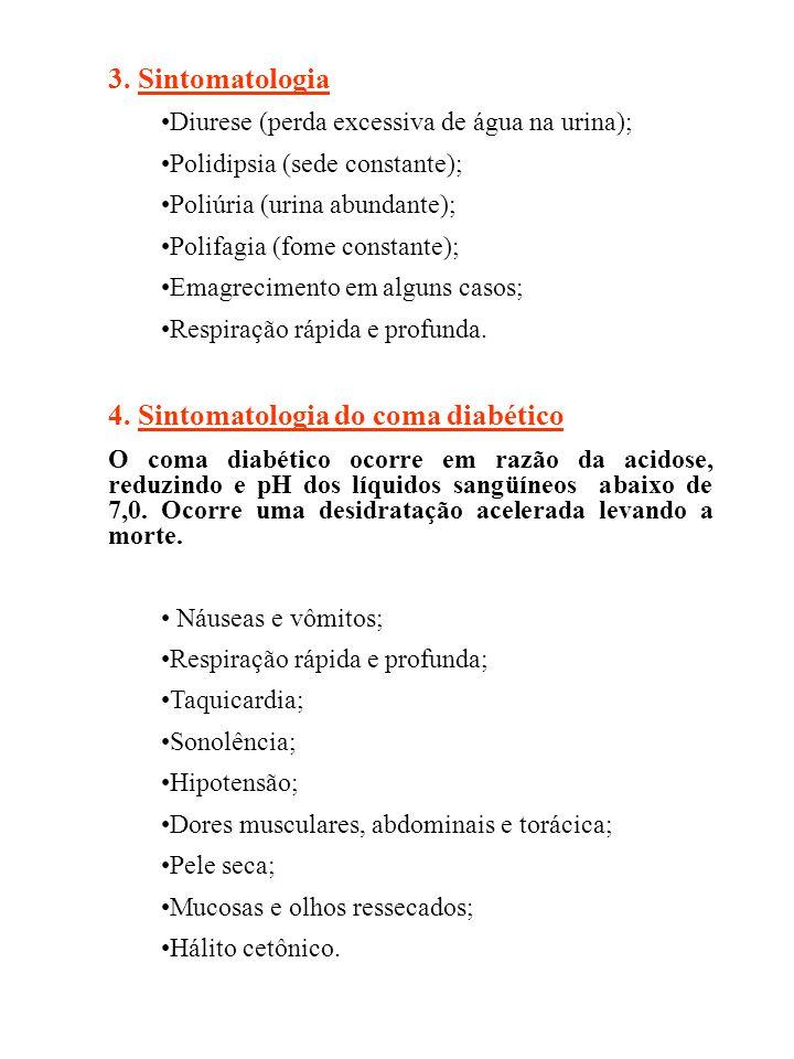 3. Sintomatologia Diurese (perda excessiva de água na urina); Polidipsia (sede constante); Poliúria (urina abundante); Polifagia (fome constante); Ema
