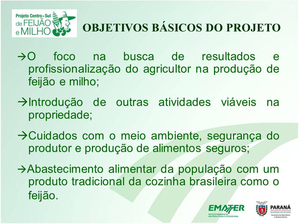 O foco na busca de resultados e profissionalização do agricultor na produção de feijão e milho; Introdução de outras atividades viáveis na propriedade