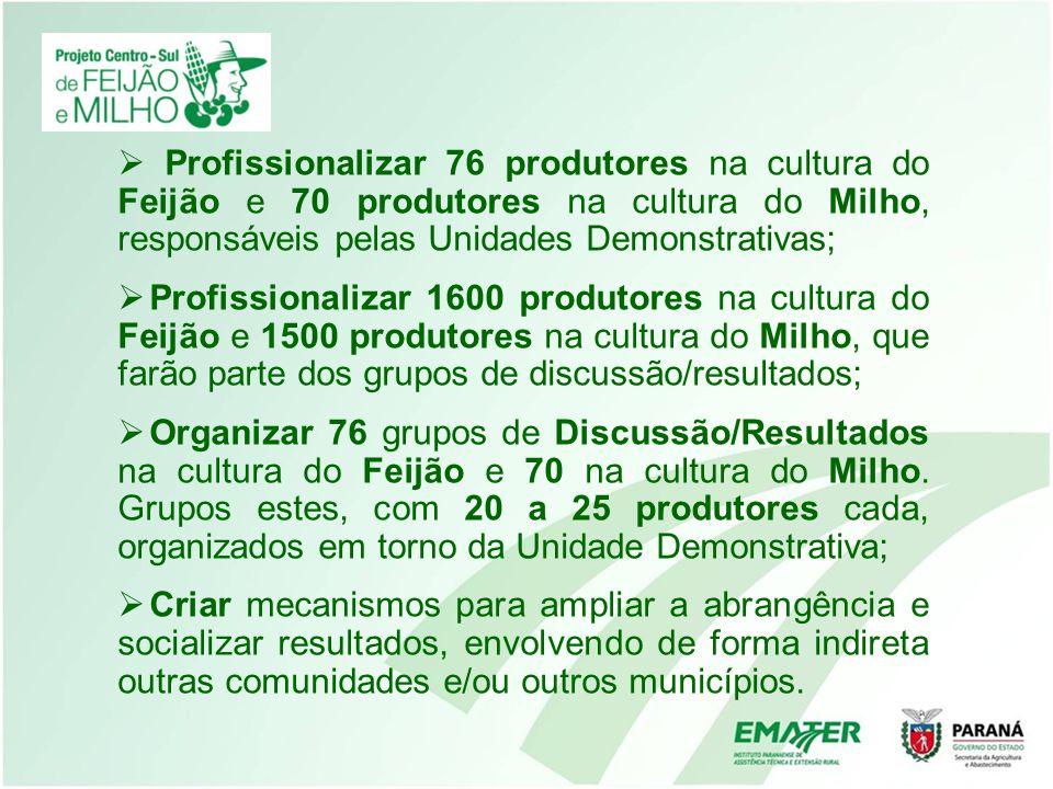 Profissionalizar 76 produtores na cultura do Feijão e 70 produtores na cultura do Milho, responsáveis pelas Unidades Demonstrativas; Profissionalizar