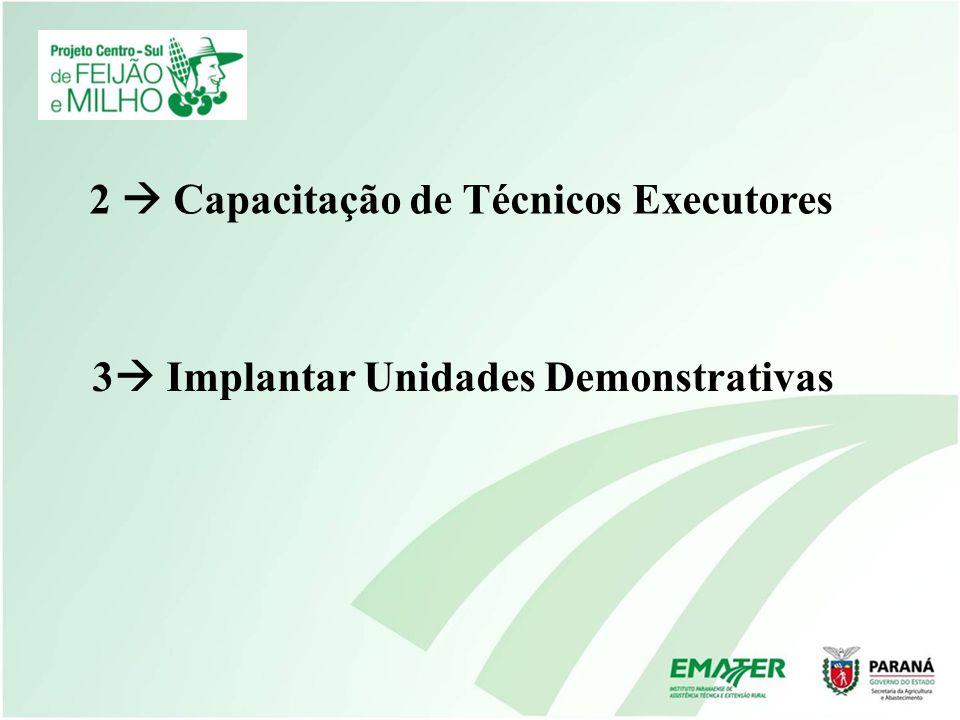 2 Capacitação de Técnicos Executores 3 Implantar Unidades Demonstrativas