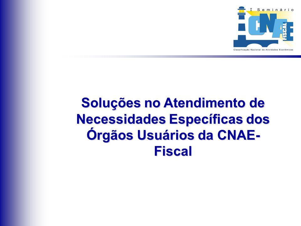 Soluções no Atendimento de Necessidades Específicas dos Órgãos Usuários da CNAE- Fiscal